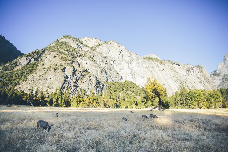 DeskToGlory_Yosemite-13