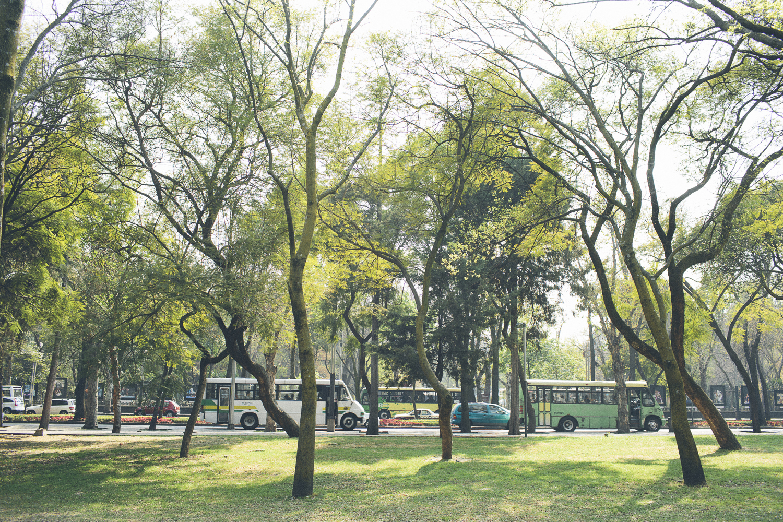140201_DeskToGlory_Mexico_City-14