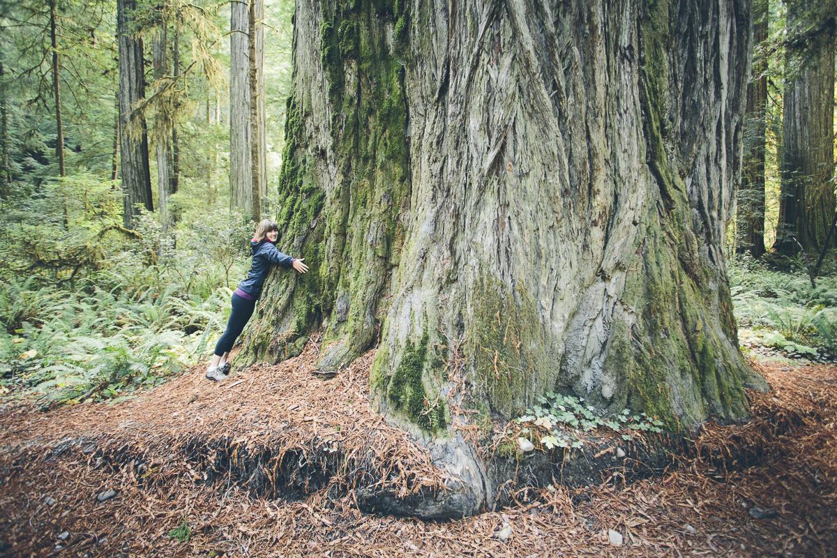 131016_DTG_Redwoods-5
