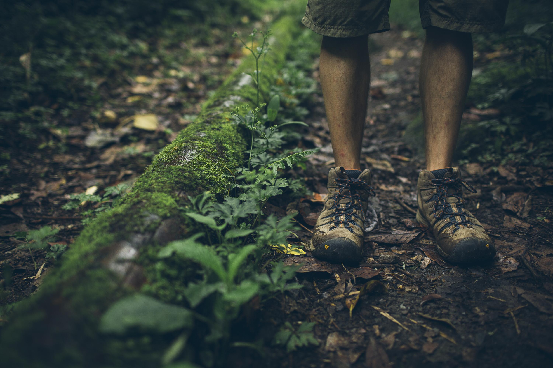Desk to Glory - Hiking Boquete-2