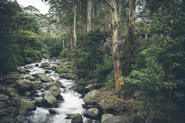 Desk to Glory - Lost Waterfalls Hike-5