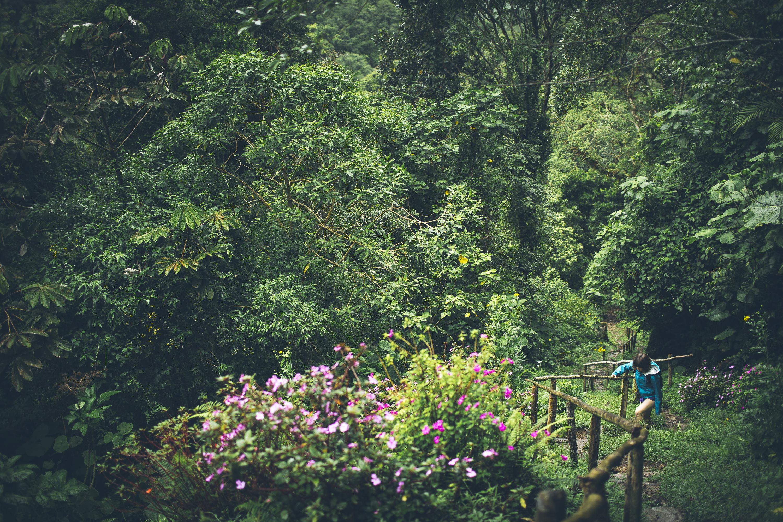 Desk to Glory - Lost Waterfalls Hike-8b