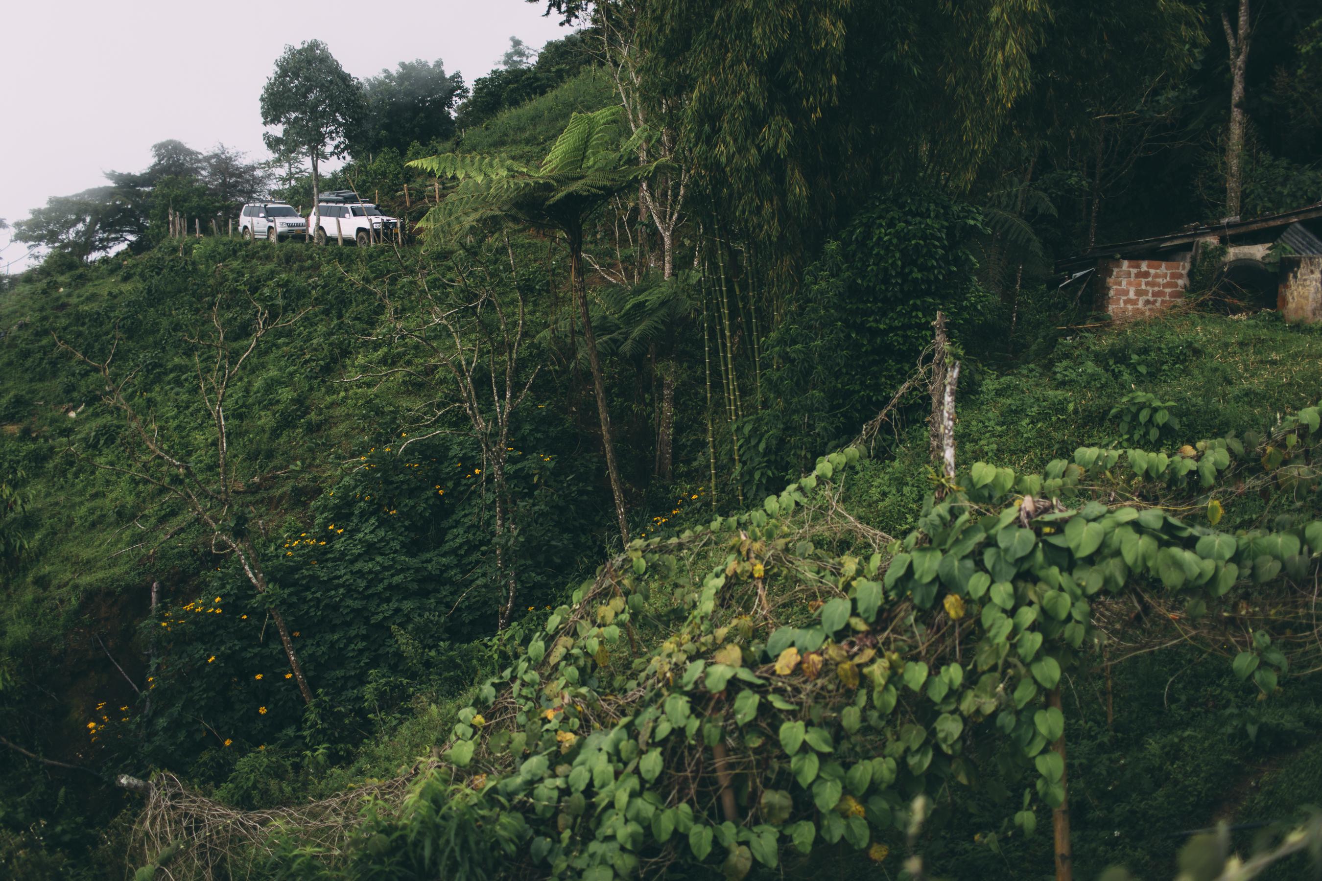 d2g_iguana4x4-26