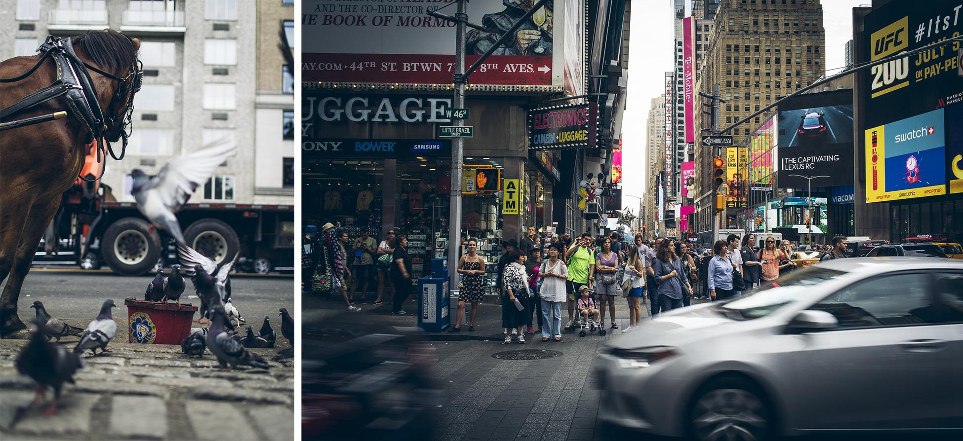 desktoglory_newyork-9 copy